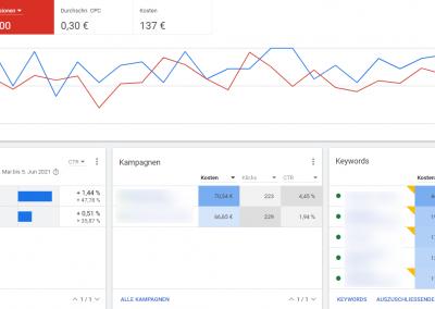 Google Ads Statistik einer laufenden Google Search Kampagne